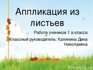 Аппликация из листьев Работа учеников 1 а класса Классный руководитель: Калинина