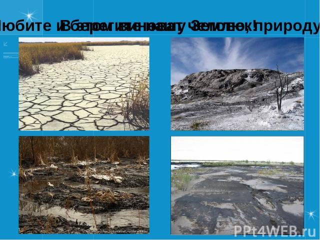 Любите и берегите нашу Землю, природу! В этом виноват человек!