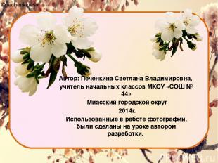 Автор: Печенкина Светлана Владимировна, учитель начальных классов МКОУ «СОШ № 44