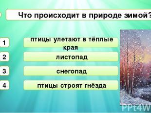 листопад снегопад Что происходит в природе зимой? А2 птицы улетают в тёплые края