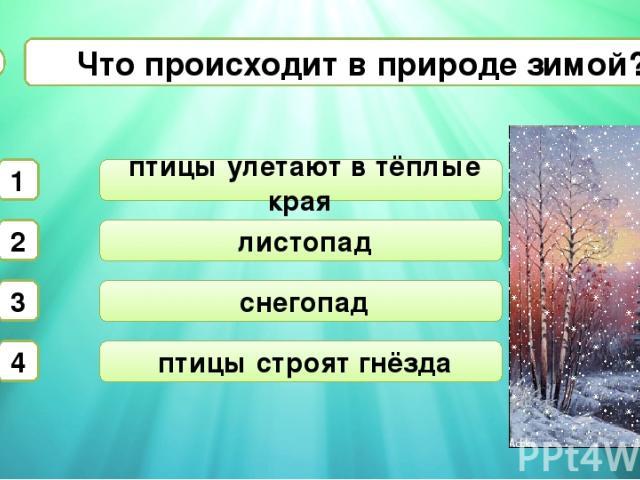 листопад снегопад Что происходит в природе зимой? А2 птицы улетают в тёплые края 1 2 3 4 птицы строят гнёзда