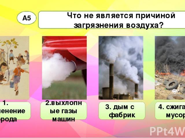 Что не является причиной загрязнения воздуха? А5 1. озеленение города 2.выхлопные газы машин 3. дым с фабрик 4. сжигание мусора
