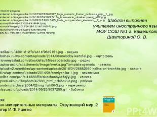 Ссылки на интернет-ресурсы http://img1.liveinternet.ru/images/attach/c/3/87/667/