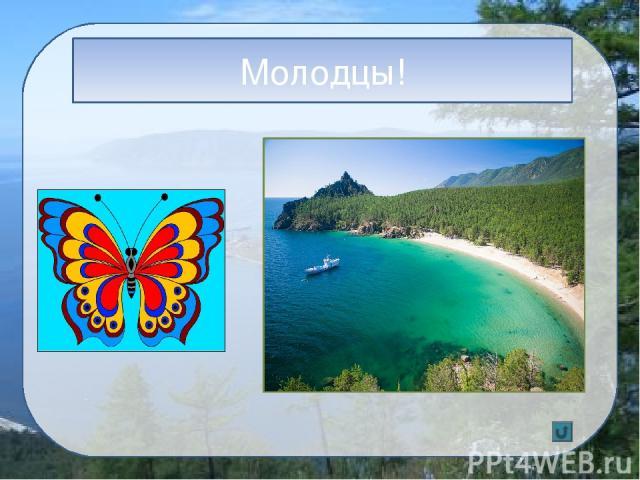 Кроссворд Северо-восточный ветер на Байкале 1 5 4 2 3 Б А Р Г У З И Н