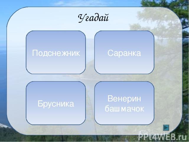 Кроссворд Самый большой населенный остров Байкала 1 5 4 2 3 Б А Р Г У И З Н О Л Ь Х О Н