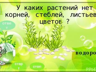 источники http://cdn.nasilkolay.com/static/LFPA4/ihlamur-ne-ise-yarar_646x340.jp