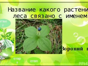 Шаблон выполнен учителем иностранного языка МОУ СОШ №1 г. Камешково Шахториной О