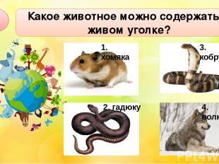 Какое животное можно содержать в живом уголке? А1 2. гадюку 3. кобру 4. волка 1.