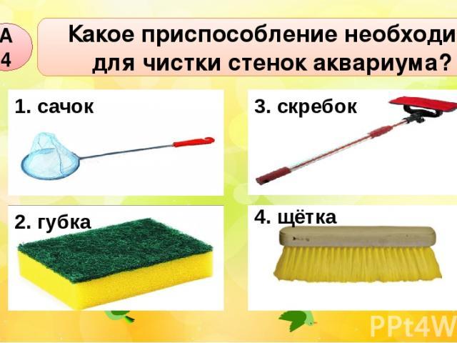 Какое приспособление необходимо для чистки стенок аквариума? А4 1. сачок 2. губка 4. щётка 3. скребок
