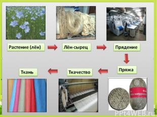Какое культурное растение человек использует для получения ткани? В2 3. ячмень 2