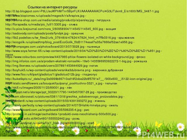 http://2.bp.blogspot.com/-P6LUacAfPhM/TnrSBprFLKI/AAAAAAAACPc/4G3UTzkm9_E/s1600/IMG_3487-1.jpg - астра http://www.biopicmea.ru/uploads/images/k/r/a/krapiva.jpg - крапива http://aroma-shop.com.ua/media/catalog/product/p/a/parsley.jpg - петрушка http:…