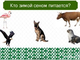 Кто самый маленький? oineverova.usoz.ru
