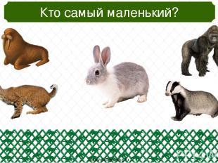 oineverova.usoz.ru