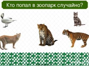 Кто не помогает человеку работать? oineverova.usoz.ru