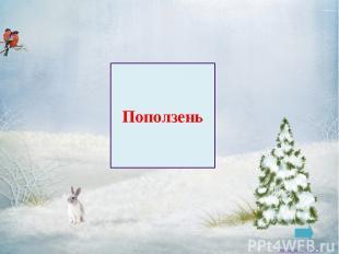 Голубь Заковряжина В.Б