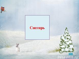 Глухарь Заковряжина В.Б
