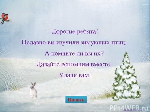Клёст Заковряжина В.Б