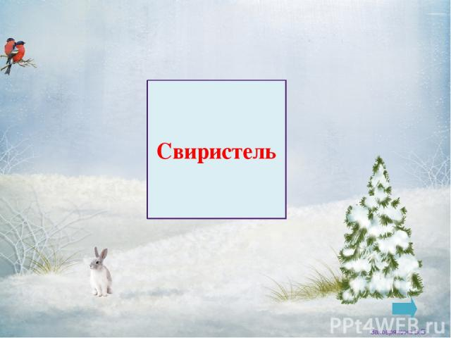 Поползень Заковряжина В.Б