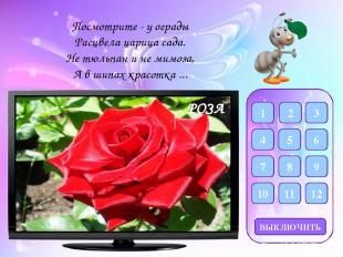 Фон Фон для рамки- http://dc734.4shared.com/img/YkCzAXNsce/s7/144965788f8/57_onl