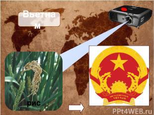 Вьетнам рис