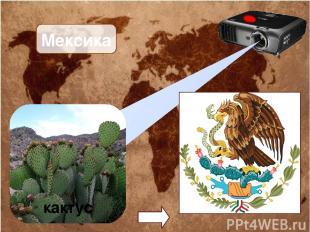 Мексика кактус
