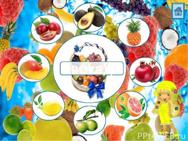 Источники: Корзина с фруктами Гранат Авокадо Лимон Лайм Апельсин Манго Ананас Тамарилло Фон Девочка в желтом