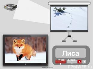 Волк Power Ответ Х → oineverova.usoz.ru