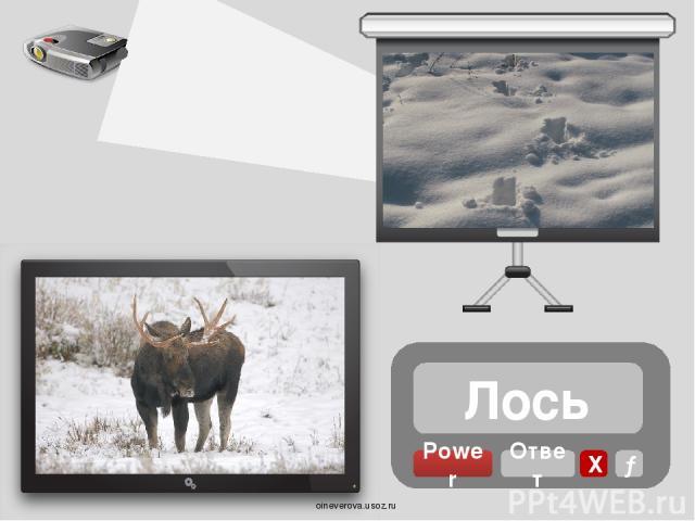Заяц Power Ответ Х → oineverova.usoz.ru
