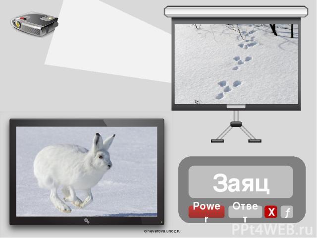 Медведь Power Ответ Х → oineverova.usoz.ru