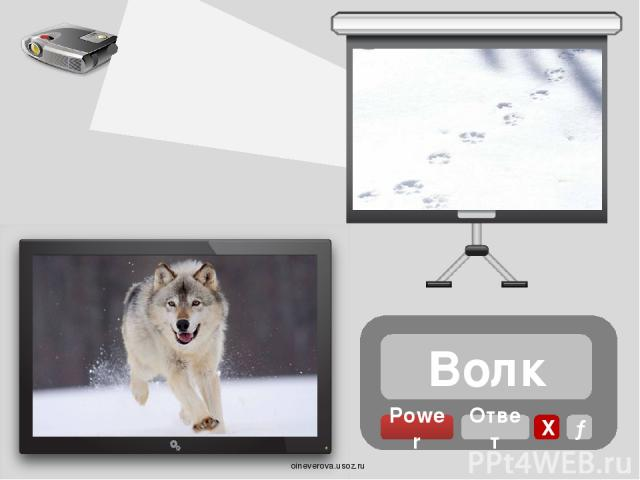 Сорока Power Ответ Х → oineverova.usoz.ru