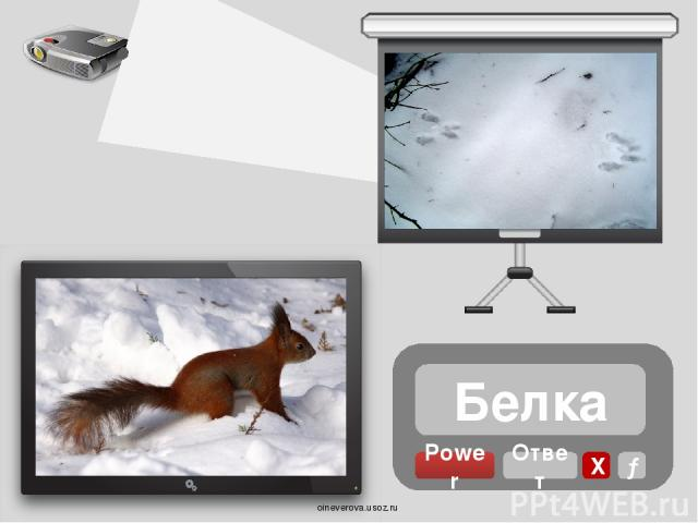 Мышь Power Ответ Х → oineverova.usoz.ru