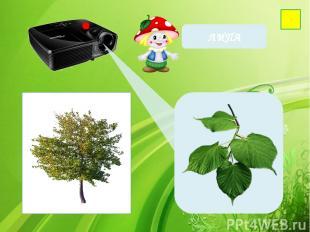 Фон-http://wallpaperscraft.ru/image/cached_65979_2048x1152.jpg Проектор- http://