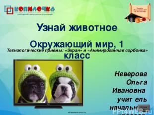 Узнай животное Окружающий мир, 1 класс Неверова Ольга Ивановна учитель начальных