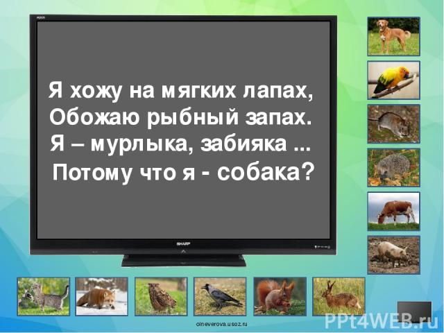 На ёлке и под ёлкою Сижу, орехи щёлкаю, А хвост – моя краса. Зовут меня - лиса? oineverova.usoz.ru