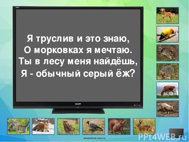 Я хожу на мягких лапах, Обожаю рыбный запах. Я – мурлыка, забияка ... Потому что я - собака? oineverova.usoz.ru