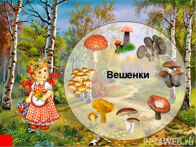 http://img0.liveinternet.ru/images/attach/c/3/76/122/76122218_4126101_02.jpg Фон http://img-fotki.yandex.ru/get/5503/svetlera.234/0_5a339_22deb106_L.jpg http://img1.liveinternet.ru/images/attach/c/2//65/267/65267270_1287000346_15.png http://img-fotk…