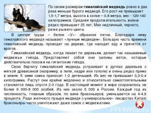 Источники информации: http://animalreader.ru/cabarga.html (кабарга) http://web-z