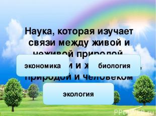 Носова Ольга Михайловна учитель начальных классов высшей квалификационной катего