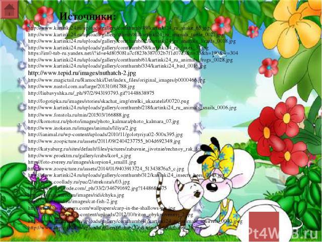 http://www.kartinki24.ru/uploads/gallery/comthumb/334/kartinki24_bird_0016.jpg http://www.tepid.ru/images/nuthatch-2.jpg http://www.magictail.ru/Ramochki/Det/index_files/original_images/p0000466.jpg http://www.nastol.com.ua/large/201310/61788.jpg ht…