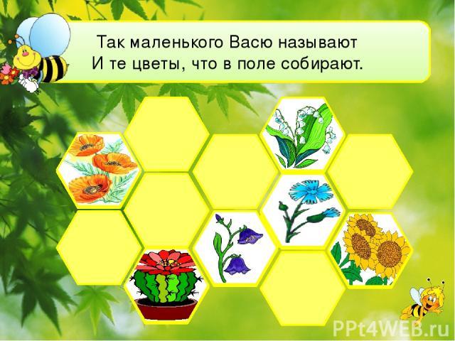 Так маленького Васю называют И те цветы, что в поле собирают.