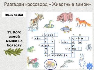 Разгадай кроссворд «Животные зимой» 11. Кого зимой мыши не боятся? лягушка о с ь