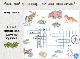 Разгадай кроссворд «Животные зимой» 4. Она зимой над ухом не жужжит. лягушка о с