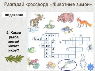 Разгадай кроссворд «Животные зимой» 5. Какая рыба зимой мечет икру? лягушка о с