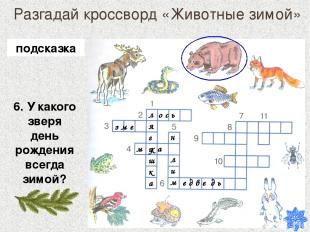 Разгадай кроссворд «Животные зимой» 6. У какого зверя день рождения всегда зимой