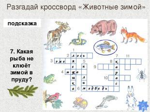 Разгадай кроссворд «Животные зимой» 7. Какая рыба не клюёт зимой в пруду? лягушк