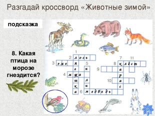 Разгадай кроссворд «Животные зимой» 8. Какая птица на морозе гнездится? лягушка