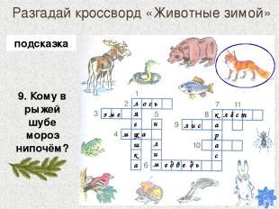 Разгадай кроссворд «Животные зимой» 9. Кому в рыжей шубе мороз нипочём? лягушка