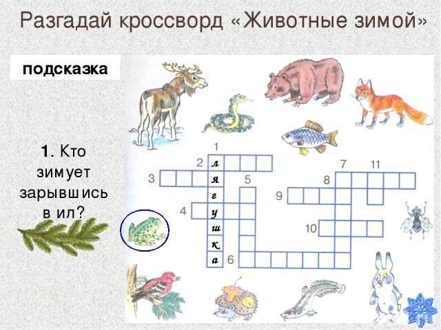 Разгадай кроссворд «Животные зимой» 1. Кто зимует зарывшись в ил? подсказка лягушка