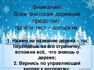 Сосна кедровая летом зимой corowina.ucoz.com
