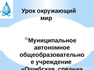 Муниципальное автономное общеобразовательное учреждение «Ошибская средняя школа»